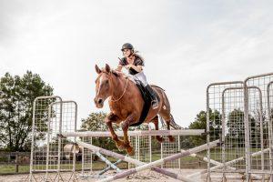Bridleless Liberty Riding