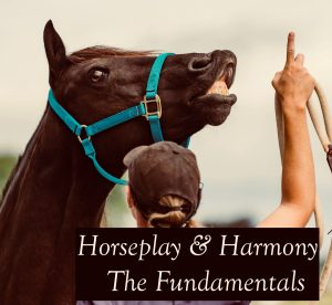 Horseplay and Harmony - The fundamentals