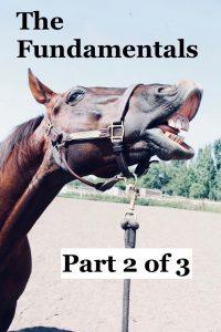Horseplay Fundamentals: Part 2 of 3