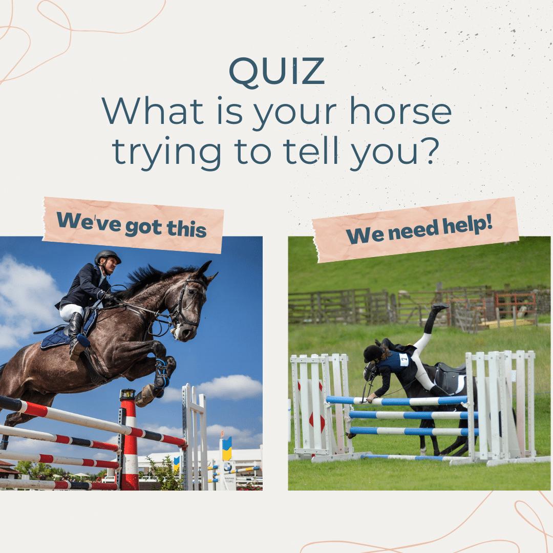Horse-Quiz-text